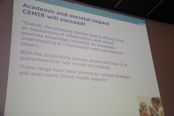Fra presentasjonen til Forskningsrådet.