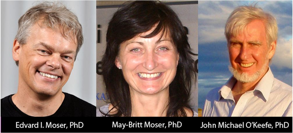 Drs. Edvard Moser, May-Britt Moser, and John O'Keefe . recipients of 2013 Horwitz prize.