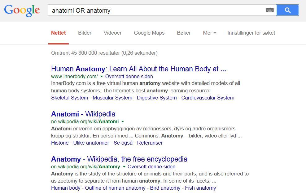 google-anatomi