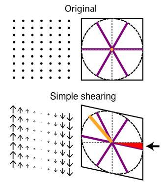 Schematic illustration of shearing forces