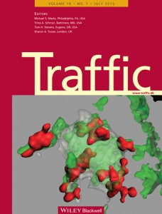 2015-Traffic-WEB