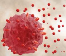 Exosomes2