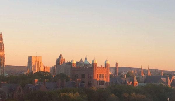 Campus Yale
