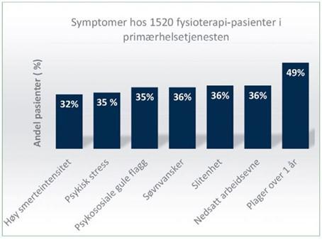 Søylediagram over hva som behandles av fysioterapeuter i primærhelsetjenesten